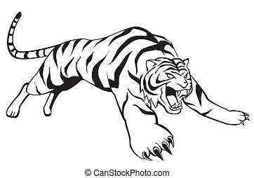 tigre, saut