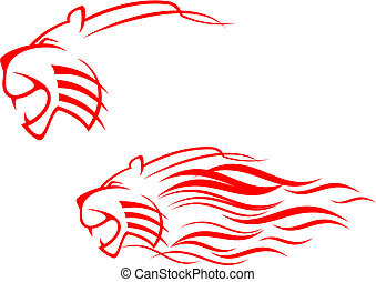 tigre, signe