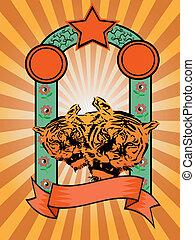 tigre, sunray