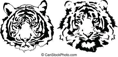 tigre, têtes, noir