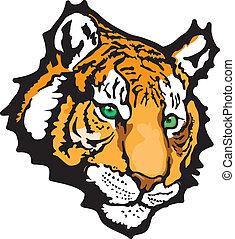 tigre, vecteur, -