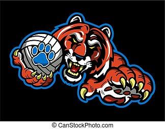tigre, volley-ball