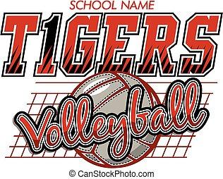 tigres, voleibol