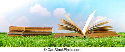 tijdschriften, gras, op, groene, leeg, catalogus, spotten