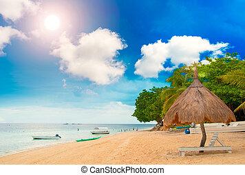 Tiki Hut on the beach with sun beds