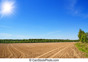 Tillage - Farming field near forest