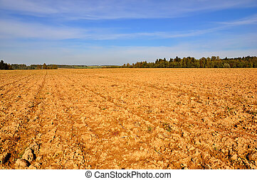 Tillage - Farming field, trees and wonderful sky at sunny...