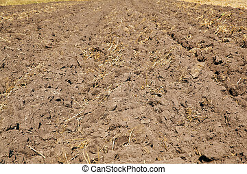 Tillage  - Freshly ploughed field - tillage background