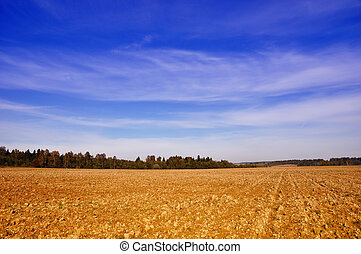Tillage - Rural landscape - farming field near forest