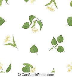 tilleul, style, coloré, arrière-plan., modèle, feuilles, fleurir, emballage, seamless, illustration, main, élégant, vecteur, paper., réaliste, dessiné, fleurs blanches, plant., toile de fond, médicinal