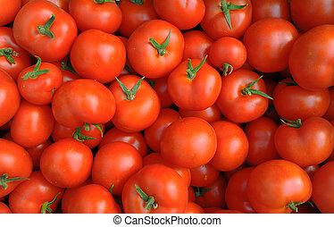 tillsluta, av, många, frisk, röd, tomatoe