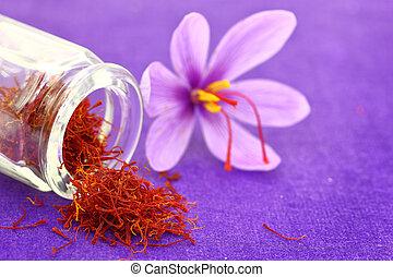 tillsluta, av, saffran, blomma, och, torkat, saffran, krydda