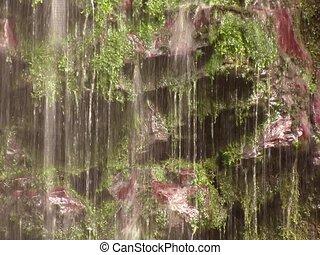 Tilt down a cloudforest waterfall