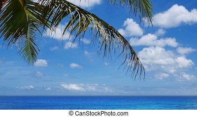 Tilt down of amazing tropical sea scenery - Camera tilt down...