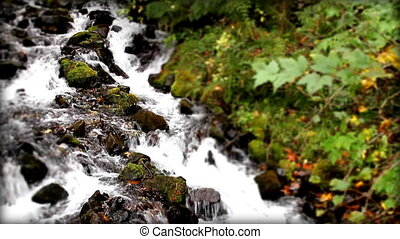 Tilt Shift Waterfall 30 FPS 1080P Oregon, USA
