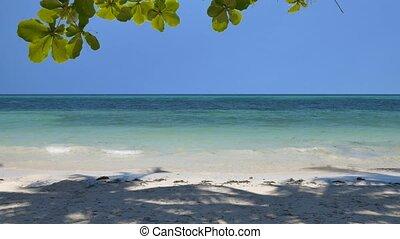 Tilt up of the peaceful tropical beach - Camera tilt up of...