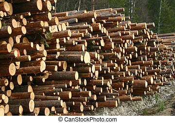 Timber - A stock of timber