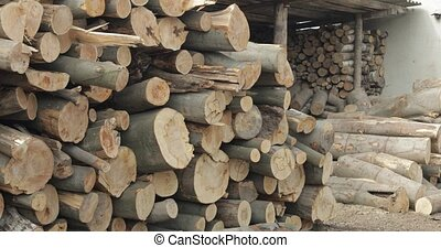 Timber logging. Freshly cut tree wooden logs piled up. Wood...