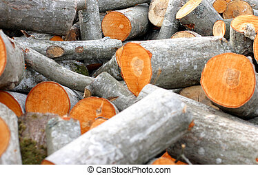 Timber pile - Pile of newly cut timber, rural scene
