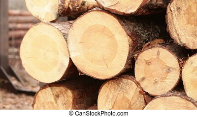timber production plant - log production plant processing...