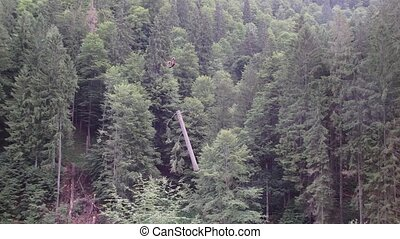 Timber harvesting - Timber transport by cable car in the...