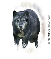 Timber Wolf watercolor - Digital Painting of Timber Wolf