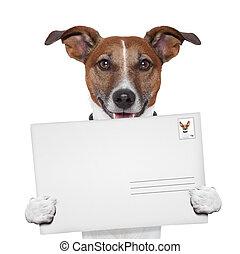 timbre, courrier, poste, enveloppe, chien