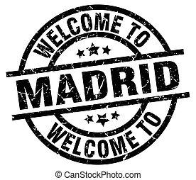 timbre,  Madrid, accueil, noir