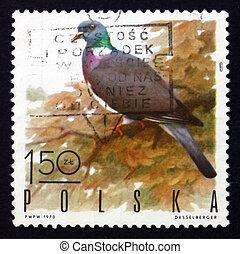 timbre postal, pologne, 1970, jeu, bois, pigeon, oiseau