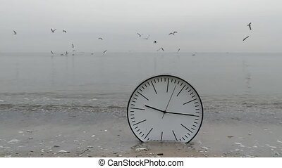 Time Concept Background, Sea Gulls in Sky, Clock in Water On Sand Beach Ocean