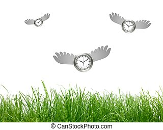 Time Flying - A conceptual image of  a time flying
