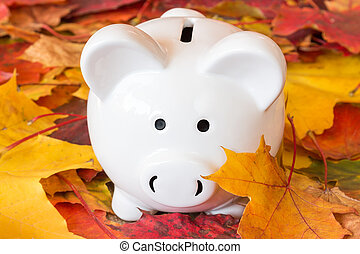 Time for Fall Savings