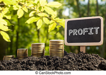 Time is money financial opportunity concept. Golden coins in soil  Chalkboard with Profit word on blurred urban background.