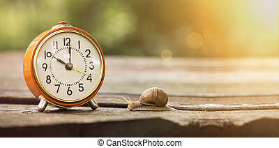 Time is slow - Retro alarm clock and slow snail - time...