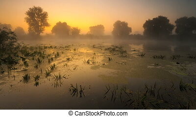 time laps. Fog, the river, landscape