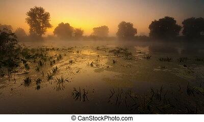time laps. Fog, the river, landscap