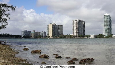 time lapse birds fishing Miami