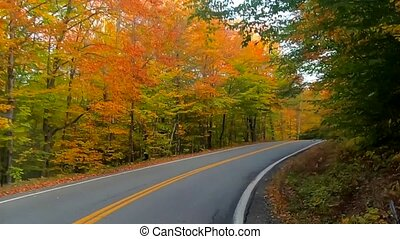 Time Lapse - Driving Under Trees and Around Curves in Full Color During Fall in Vermont.