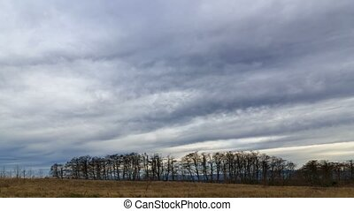 Time lapse of clouds over open field meadow in Portland OR during Winter season