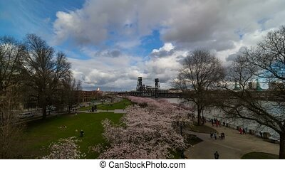 Time lapse of clouds over Portland OR downtown waterfront with Cherry Blossom trees springtime 4k