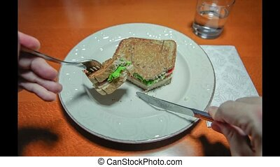 Time lapse of man hands close up eating a sandwich