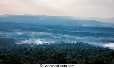 Time lapse of mist in rain forest Khao Yai Thailand