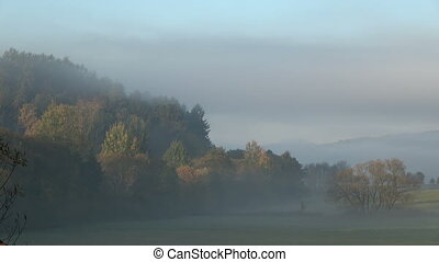 Time lapse of mist rising above the meadow near the forest....