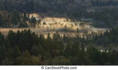 Time Lapse of Rolling Fog in Oregon - Ultra High Definition...