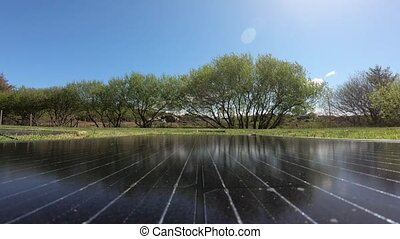 Time lapse pf Photovoltaic modules with trees and cows in ...