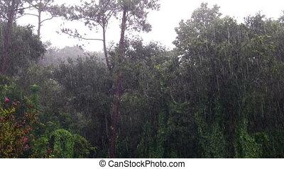 Time Lapse Rain Storm
