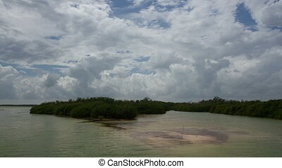 time-lapse shot of marshland in the sian ka'an natural park,...