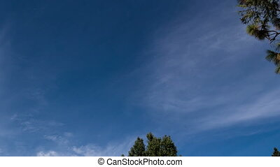 Time Lapse Wispy Clouds In Blue Sky - Time Lapse With Tree...