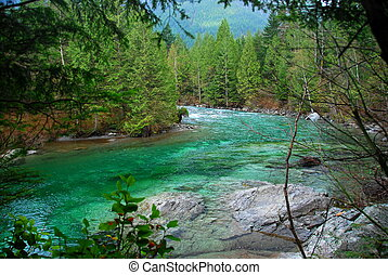 time to rest - morning hike, golden ears park, bc,canada
