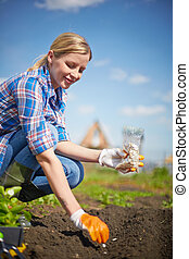 Time to sow - Image of female farmer sowing seed in the...